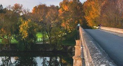 Ponte e foglie d'autunno