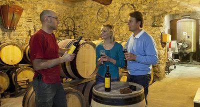 Degustazione di vini a Tannay