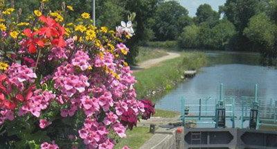 Chiusa fiorita in Bretagna