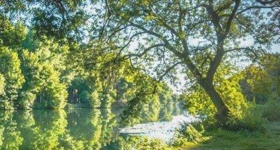 Mattina di sole, Charente