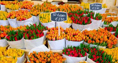 Mercati dei tulipani di Amsterdam