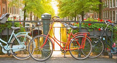Scopri le strade storiche di Amsterdam in bicicletta
