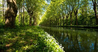 Canal du Rhône au Rhin, vicino a Strasburgo