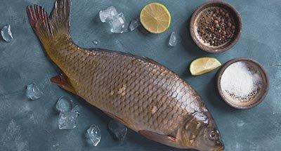 Pesce in un piatto