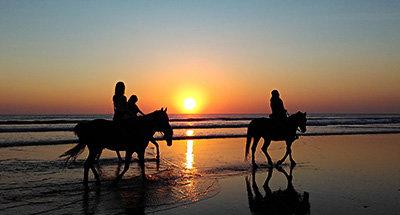 Cavalli sullaspiaggia