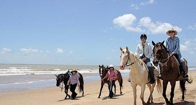 Escursioni a cavallo in Camargue