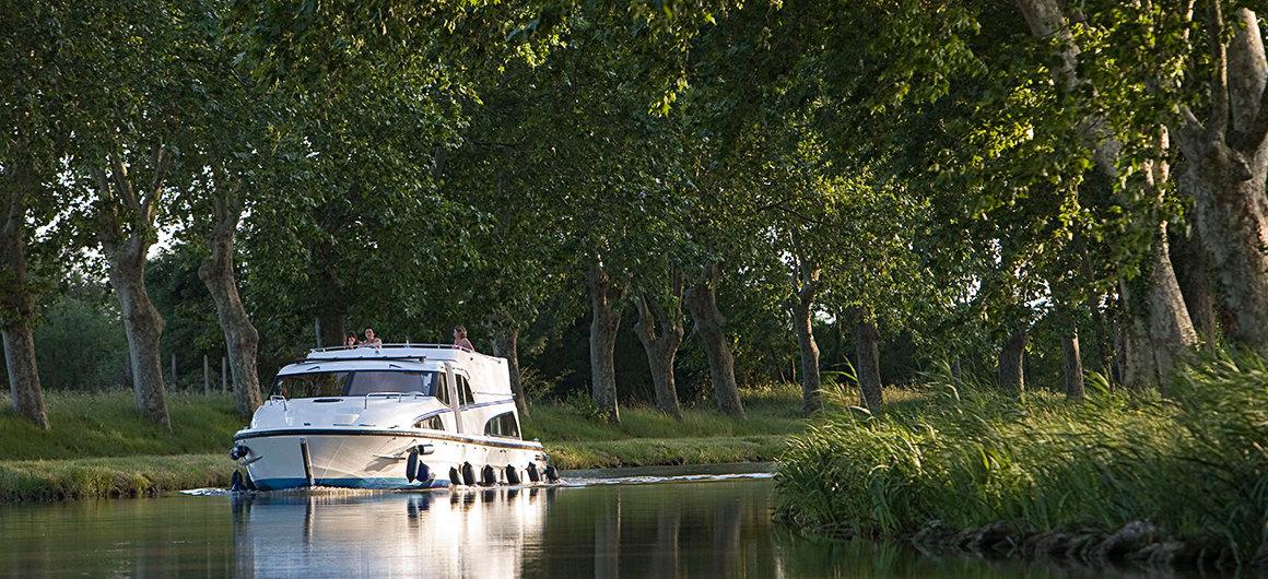 Alberi lungo le rive del Canal du Midi
