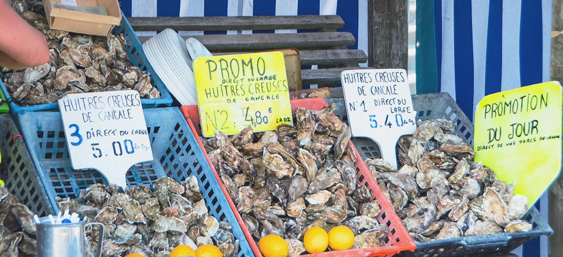Ostriche in un mercato, Bretagna