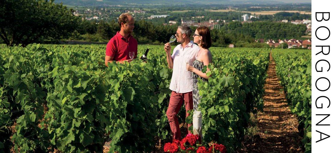 Gita enologica in Borgogna