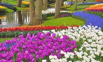 Parco botanico di Keukenhof a Lisse